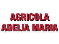 Sucursal Online de Agrícola Adelia María