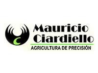 Sucursal Online de Mauricio Ciardiello