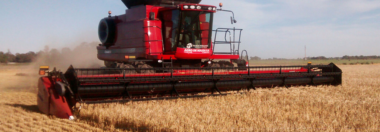 Sucursal Online de Agro de Souza en Agrofy