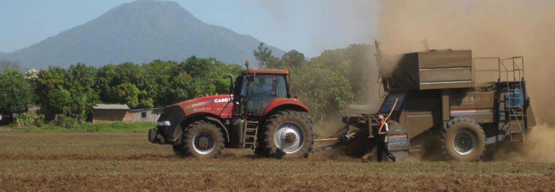 Sucursal Online de Cerutti & Sitto en Agrofy