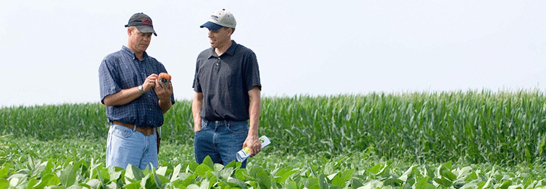 Sucursal Online de Martin Morris en Agrofy