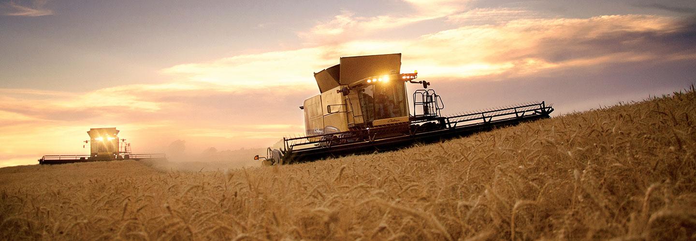Sucursal Online de Challenger en Agrofy