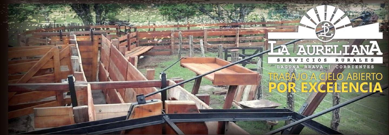 Sucursal Online de La Aureliana en Agrofy
