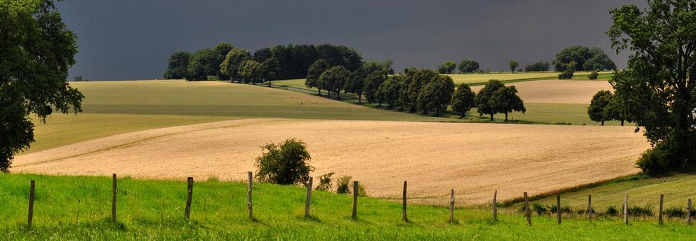 Sucursal Online de Maquinas y Campo en Agrofy